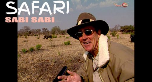 , South Africa – Safari in Sabi Sabi Game Reserve